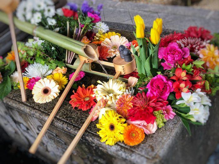京都に行ったら座禅・写経の体験を【勝林寺】花手水はインスタ映え